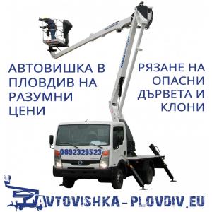 Автовишка в Пловдив на ниски цени – Рязане на опасни дървета